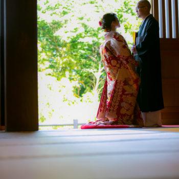 お寺、紫陽花ロケ